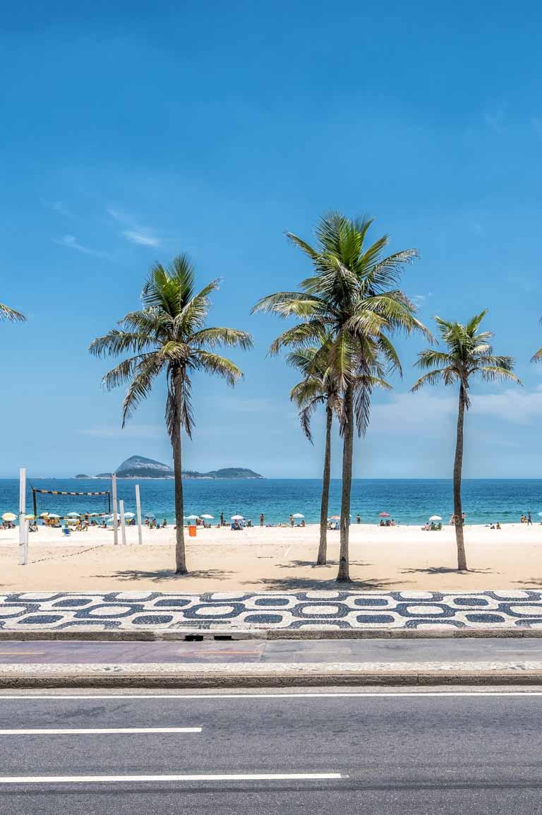 Palmeiras na praia de Ipanema